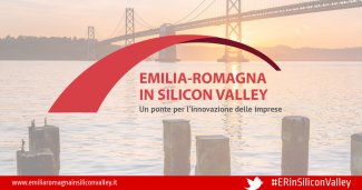 ERinSiliconValley